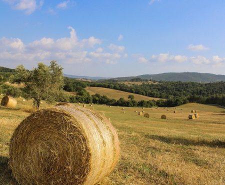 Toscana cosa vedere